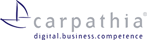 Carpathia digital business competenc